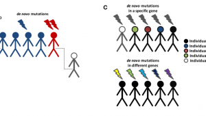 Chromatin regulators, phenotypic robustness, and autism risk
