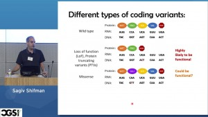 Different types of coding variants